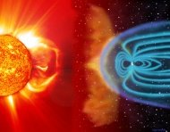 The earth's magnetic field determines the telluric networks